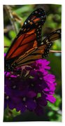 Autumn Butterfly Beach Towel