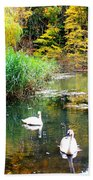 Autumn By The Swan Lake Beach Towel