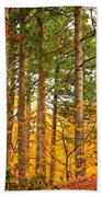 Autumn Canvas Beach Towel