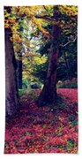 Autumn Carpet In The Enchanted Wood Beach Towel