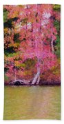 Autumn Color In Norfolk Botanical Garden 1 Beach Towel