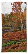 Autumn Colors Beach Towel