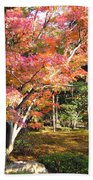 Autumn Colors Beach Towel