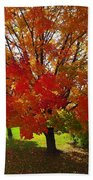 Autumn Colours Beach Towel