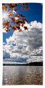 Autumn  Confidential  Beach Towel by Bob Orsillo