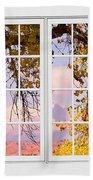 Autumn Cottonwood Tree Longs Peak White Window View Beach Towel