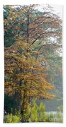 Autumn Cypress Beach Towel