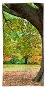 Autumn Beach Towel