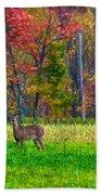 Autumn Doe - Paint Beach Towel