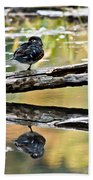 Autumn Duck Reflections Beach Towel