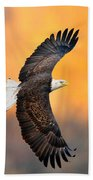 Autumn Eagle Beach Towel
