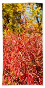 Autumn Flames Beach Towel