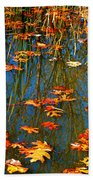 Autumn  Floating Beach Towel by Peggy Franz