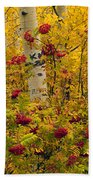 Autumn Forest Colors Beach Towel