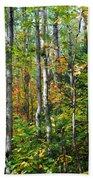 Autumn Forest Detail Beach Towel