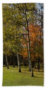 Autumn Forests And Fields Beach Towel