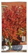 Autumn Glory Beach Towel