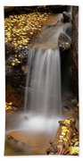 Autumn Gold And Waterfall Beach Towel by Leland D Howard