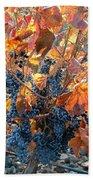Autumn Grapes Beach Sheet