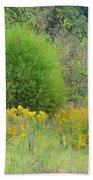 Autumn Grasslands Beach Towel