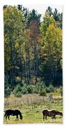 Autumn Grazing Beach Towel