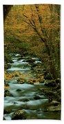 Autumn Greenbriar Cascade Beach Towel