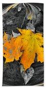 Autumn In Color Beach Towel