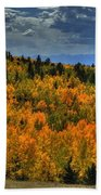 Autumn In Colorado Beach Towel