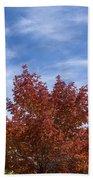 Autumn In Glenwood Canyon - Colorado Beach Towel