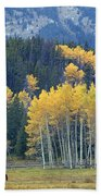 1m9359-autumn In Jackson Hole Ranch Country Beach Towel