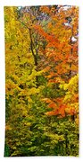 Autumn In Southwest Michigan Beach Towel