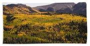 Autumn In The Colorado Mountains Beach Sheet