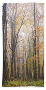 Autumn In The Smoky Mountains Beach Towel