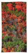 Autumn In The Wasatch Range Beach Towel