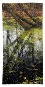 Autumn In Wildwood Park Beach Towel