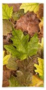 autumn is coming 5 - A carpet of autumn color leaves  Beach Towel