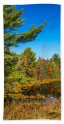 Autumn Lake 4 Beach Towel