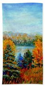 Autumn Landscape Quebec Red Maples And Blue Spruce Trees Beach Towel