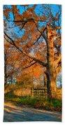 Autumn Lane Mpasto Beach Towel