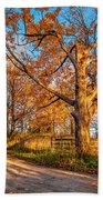 Autumn Lane Beach Towel