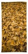 Autumn Leaf Background Beach Towel