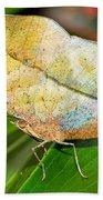 Autumn Leaf Butterfly Beach Towel