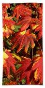 Autumn Leaves 08 Beach Towel