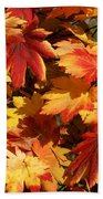 Autumn Leaves 09 Beach Towel
