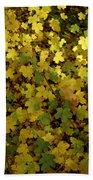 Autumn Leaves 091 Beach Towel
