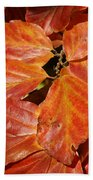 Autumn Leaves 80 Beach Towel