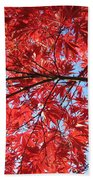 Autumn Leaves And Blue Sky Beach Towel