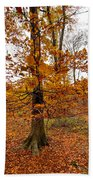 Autumn Leaves Common Wood  Beach Towel