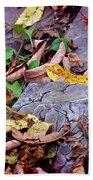 Autumn Leaves In Creek Bed Beach Towel