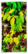 Autumn Leaves In Green And Yellow Beach Towel